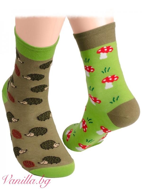 Чорапи с таралежи и гъбки
