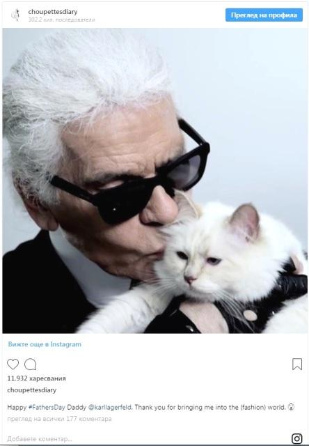 Choupette, котката на лагерфелд
